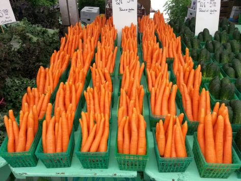 Photo by John K ~ Carrots for the Lore!